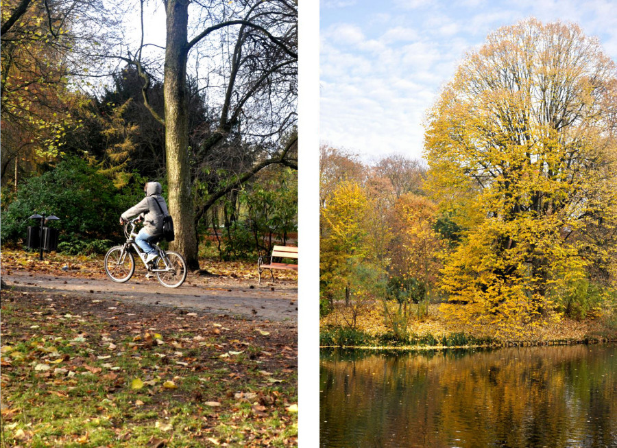 Koszaliński park jesienią. Rwerzysta. Jesienne drzewa odbijające się w wodzie. bebuszka