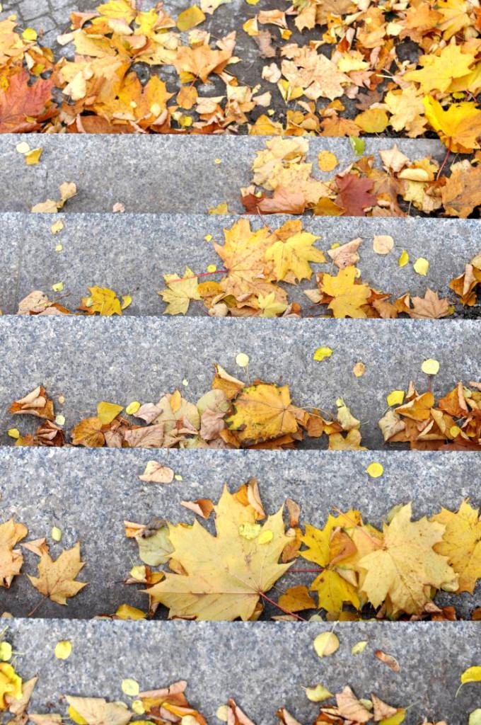 Koszaliński park jesienią. Schody pełne jesiennych liści. bebuszka