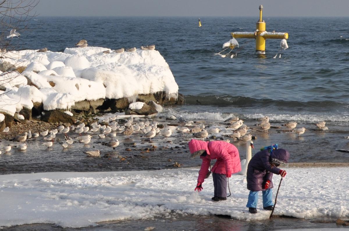 Gdynia Orłowo - miejsce na spacer