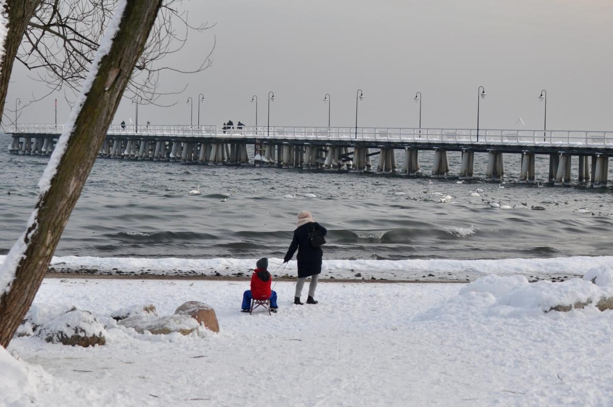 Gdynia Orłowo - sanki, zimowy spacer, widoki