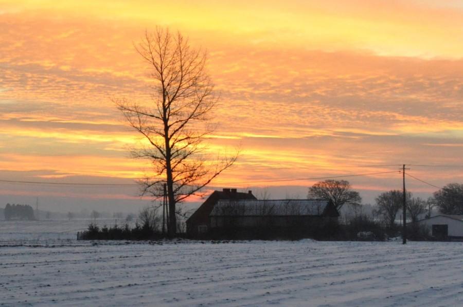 Zimowy poranek. Wschód słońca. bebuszka