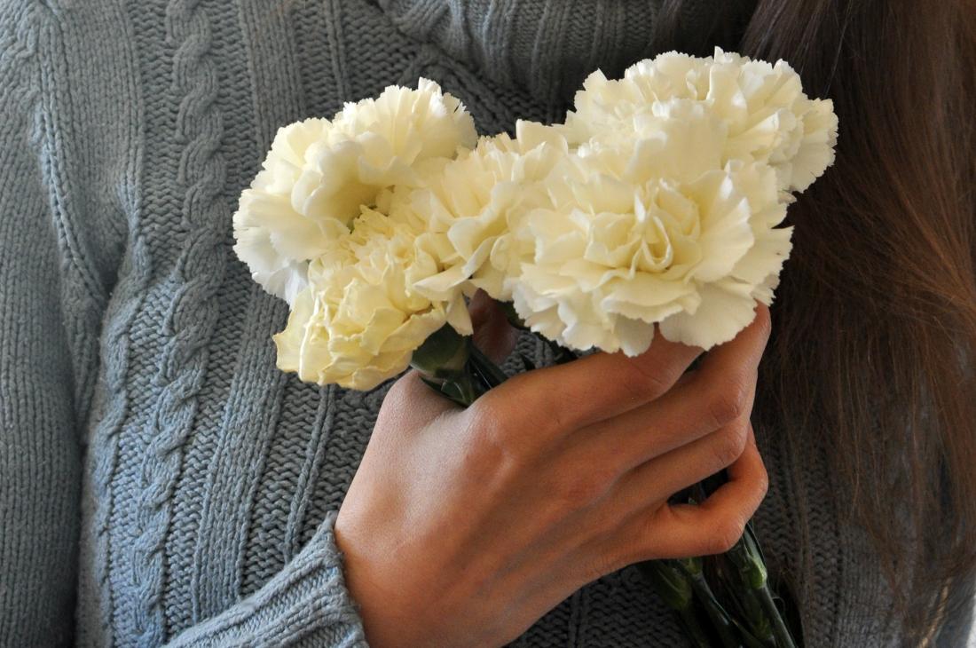 Kwiaty zimowe. bebuszka