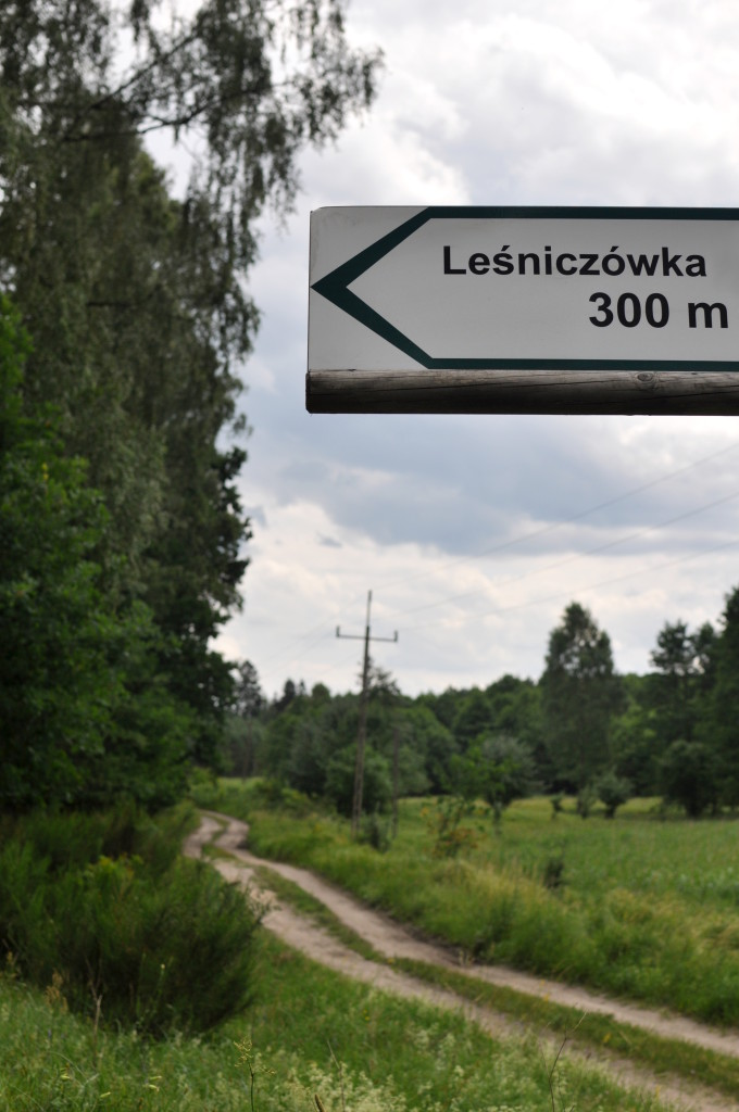 bebuszka.pl las