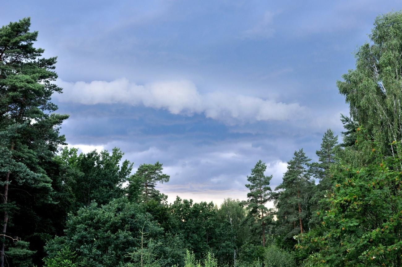 bebuszka blog lato (30)