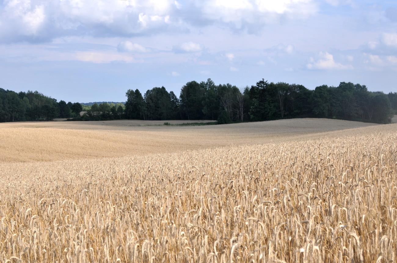 mazury, polska wieś