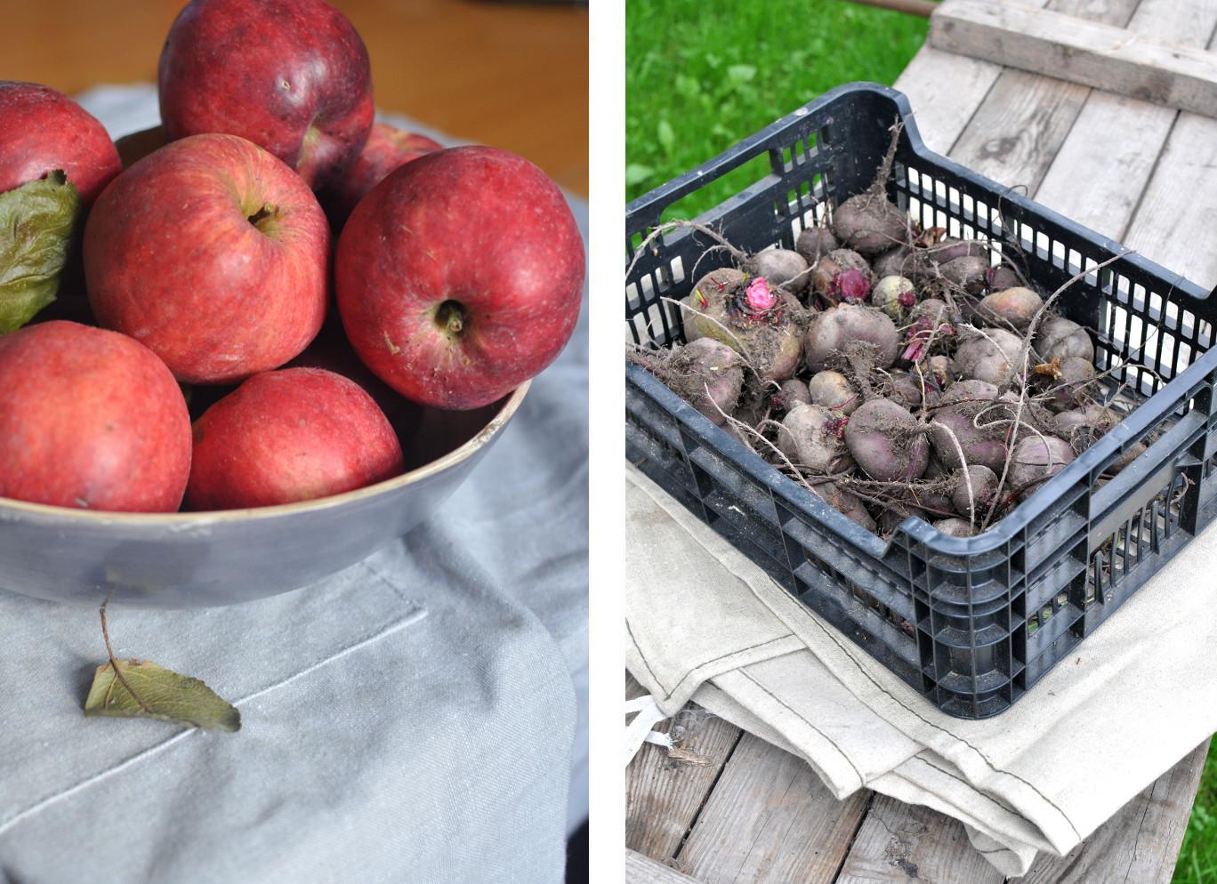 zdrowe odżywianie, jabłka i buraki, slowfood