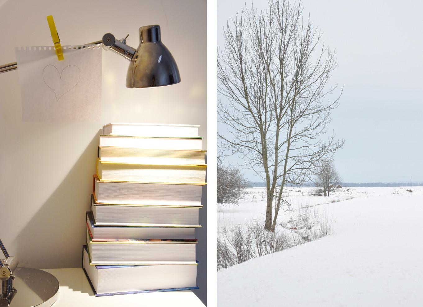 zima, książki